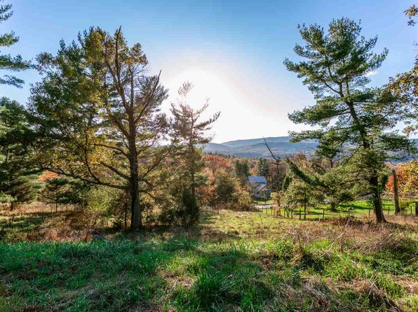 null bed null bath Vacant Land at 0 Lower Cove Run Rd Mathias, VA, 26812 is for sale at 64k - 1 of 6