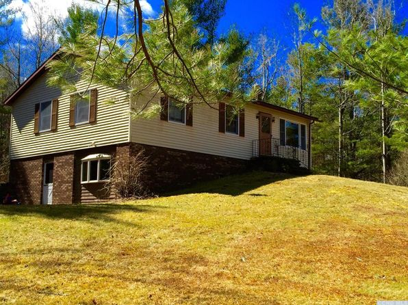 4 bed 2 bath Single Family at 476 County Route 56 Windham, NY, 12496 is for sale at 249k - 1 of 25