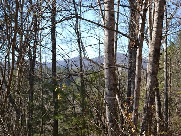 null bed null bath Vacant Land at  Stillwind Rd Topton, NC, 28781 is for sale at 40k - 1 of 18