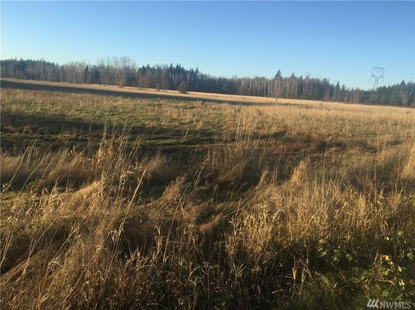 null bed null bath Vacant Land at 7949 Custer School Rd Custer, WA, 98240 is for sale at 400k - 1 of 6