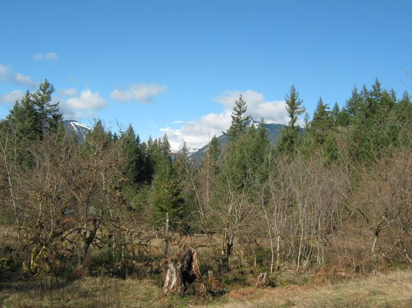 null bed null bath Vacant Land at 121 Bear Grass Packwood, WA, 98361 is for sale at 115k - 1 of 5