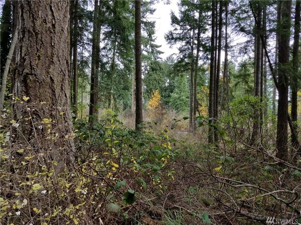 null bed null bath Vacant Land at 999999 B St Port Hadlock, WA, 98339 is for sale at 72k - google static map