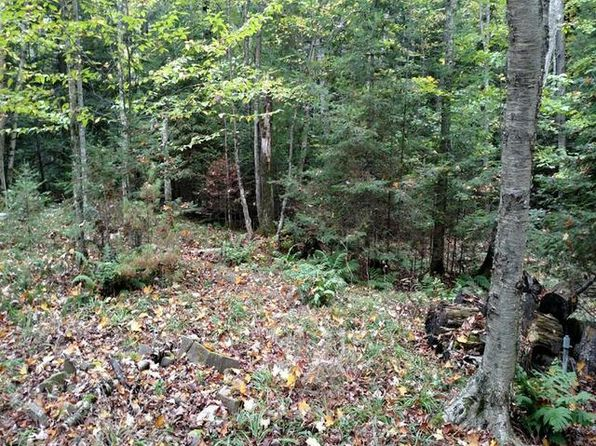 null bed null bath Vacant Land at 9469 Woodhaven Rd Pickerel, WI, 54465 is for sale at 43k - 1 of 7
