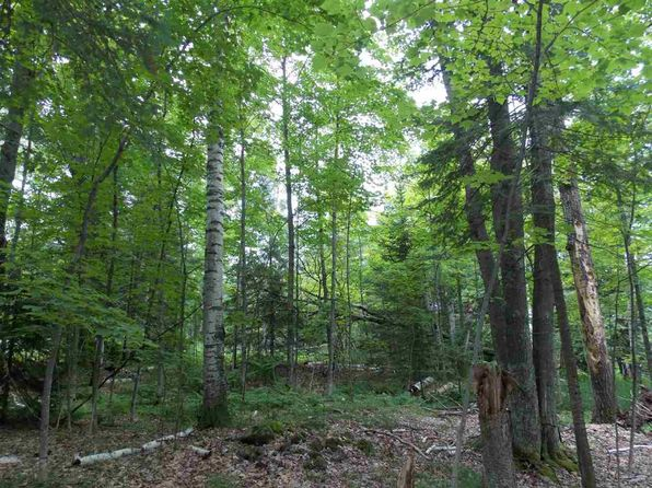 null bed null bath Vacant Land at  Tbd Bayshore Rd L'Anse, MI, 49946 is for sale at 46k - 1 of 20