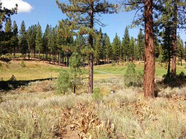 null bed null bath Vacant Land at 95 FOX SPARROW GRIZZLY ROAD, CA, 96122 is for sale at 85k - google static map