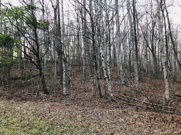 null bed null bath Vacant Land at  SYLVAN DR MONTEREY, TN, 38574 is for sale at 20k - 1 of 6