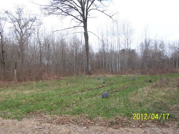 null bed null bath Vacant Land at S Town Line Rd Roscommon, MI, 48653 is for sale at 19k - 1 of 2