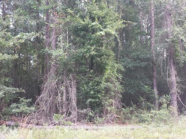 null bed null bath Vacant Land at 0000 Camelot Ln Rd Marianna, FL, 32446 is for sale at 30k - 1 of 3