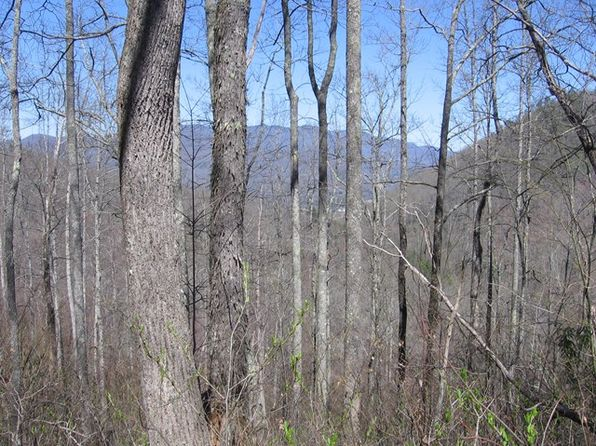 null bed null bath Vacant Land at  Tract 37 Lanterns Wick Trl Sylva, NC, 28779 is for sale at 47k - 1 of 5
