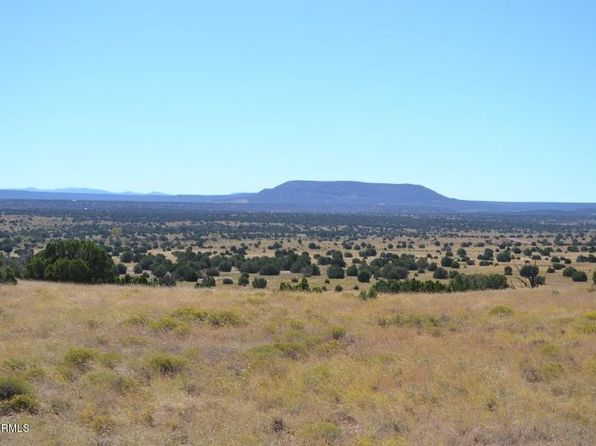 null bed null bath Vacant Land at  Lot 45 Acr 5575 -- Concho, AZ, 85924 is for sale at 85k - 1 of 26