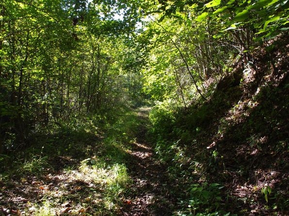 null bed null bath Vacant Land at  Mohawk Coal Rd Wellston, OH, 45692 is for sale at 153k - 1 of 22