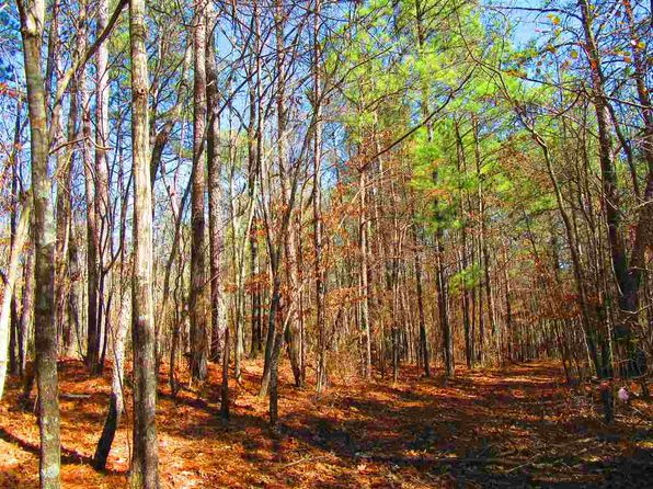 null bed null bath Vacant Land at 20+/ Acres Co Rd Wedowee, AL, 36278 is for sale at 79k - 1 of 29