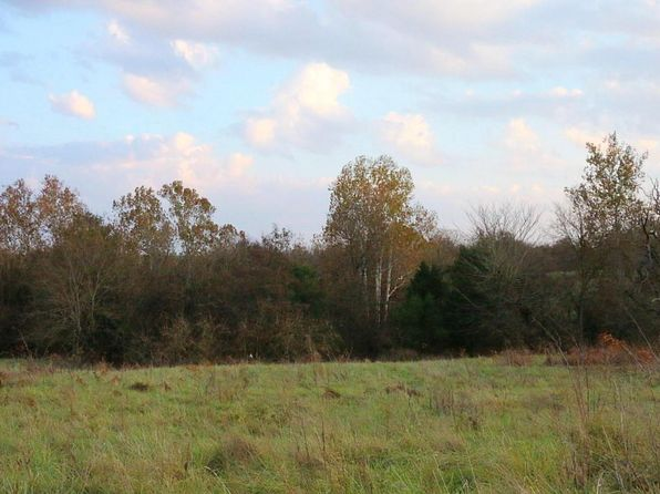 null bed null bath Vacant Land at  Tbd East 552nd Rd Pleasant Hope, MO, 65725 is for sale at 19k - 1 of 6