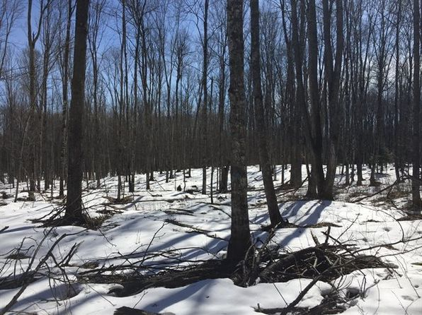 null bed null bath Vacant Land at  Tbd Mine 40a Rd Pclc Gibbs 40a 26071sa010 46.1616n Iron River, MI, 49919 is for sale at 42k - 1 of 12
