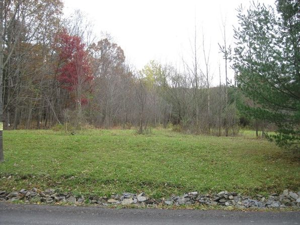 3 bed null bath Vacant Land at 427 Park Hollow Rd Sayre, PA, 18840 is for sale at 75k - 1 of 2