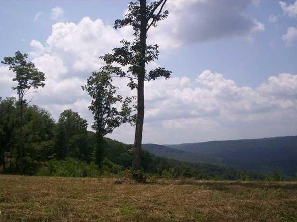 null bed null bath Vacant Land at 0 Coyote Tr Spencer, TN, 38585 is for sale at 90k - 1 of 3