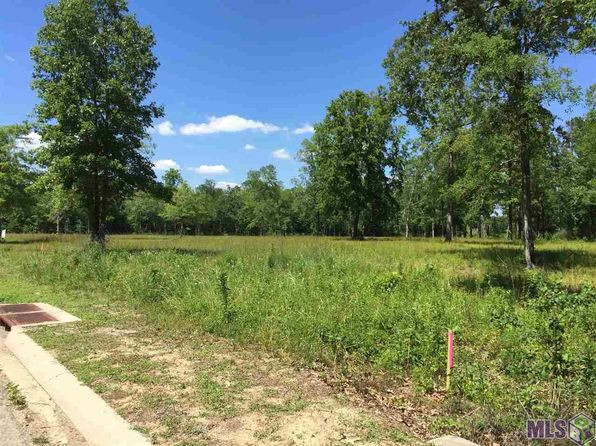 null bed null bath Vacant Land at FA-3 Panther Rd Springfield, LA, 70462 is for sale at 35k - 1 of 5