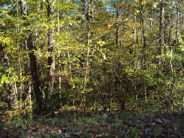 null bed null bath Vacant Land at 3640 Stacey Rd Smithville, TN, 37166 is for sale at 25k - google static map