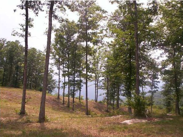 null bed null bath Vacant Land at 0 Coyote Tr Spencer, TN, 38585 is for sale at 80k - 1 of 2