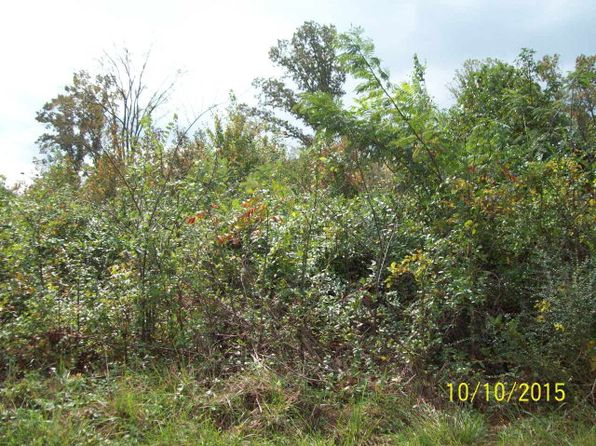 null bed null bath Single Family at  Pollard Cemetary Rd Walling, TN, 38587 is for sale at 29k - google static map