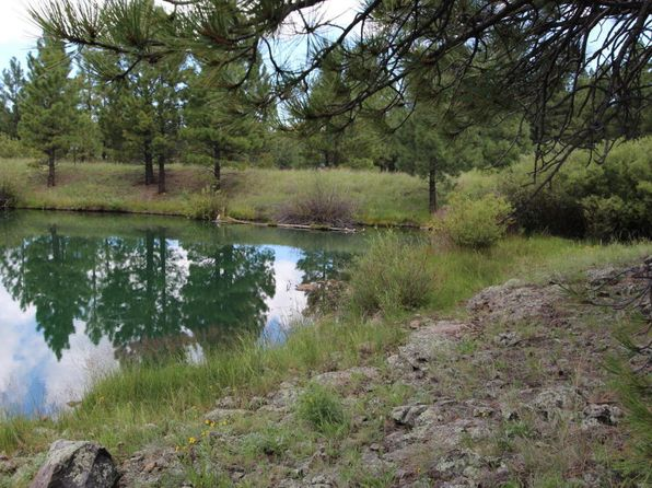 null bed null bath Vacant Land at 1027 Acr Greer, AZ, 85927 is for sale at 199k - 1 of 7