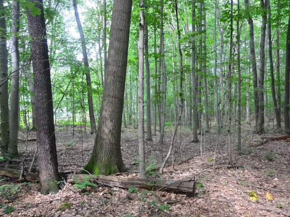 null bed null bath Vacant Land at 14251 Kiefer Rd Springboro, PA, 16435 is for sale at 280k - 1 of 40