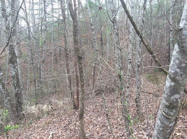 null bed null bath Vacant Land at  Lot 1&3 Holley Mountain Top Rd Whittier, NC, 28789 is for sale at 10k - 1 of 3