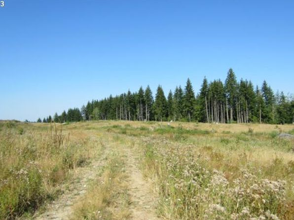 null bed null bath Vacant Land at 35 Silver Rdg Castle Rock, WA, 98611 is for sale at 55k - 1 of 4