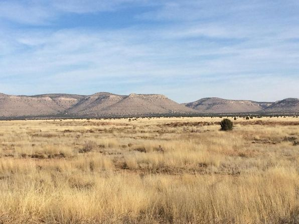 null bed null bath Vacant Land at 0 Feldspar Paulden, AZ, 86334 is for sale at 15k - 1 of 5