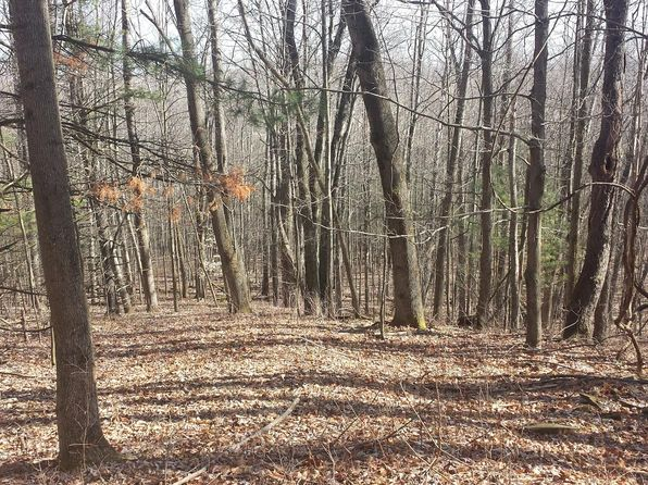 null bed null bath Vacant Land at 21 Acre Wooded Athens, PA, 18810 is for sale at 79k - 1 of 2