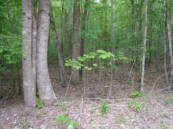 null bed null bath Vacant Land at 144 Buck Spring Dr Littleton, NC, 27850 is for sale at 12k - google static map