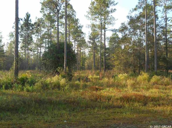 null bed null bath Vacant Land at  SE 64th St Lake Butler, FL, 32054 is for sale at 30k - 1 of 7