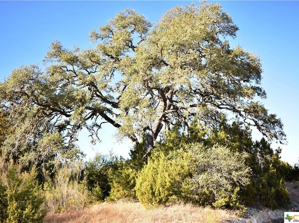 null bed null bath Vacant Land at  Lot 584 Desiree Canyon Lake, TX, 78133 is for sale at 24k - 1 of 4
