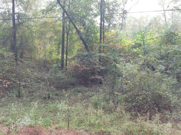 null bed null bath Vacant Land at 0 Alford Rd Pittsview, AL, 36864 is for sale at 35k - google static map