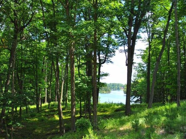 null bed null bath Vacant Land at ON Big Lake Rd E Watersmeet, MI, 49969 is for sale at 259k - 1 of 5