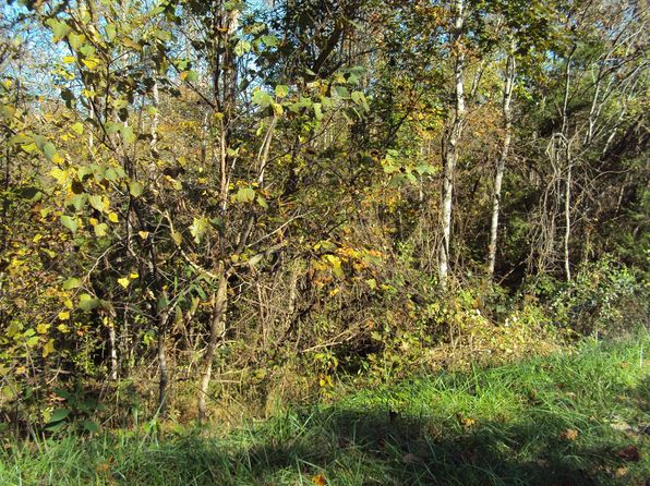 null bed null bath Vacant Land at 3135 Stacey Rd Smithville, TN, 37166 is for sale at 25k - google static map
