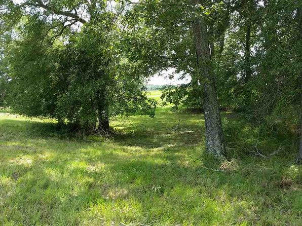 null bed null bath Vacant Land at 120 Winchester Dr Flora, MS, 39071 is for sale at 95k - 1 of 5