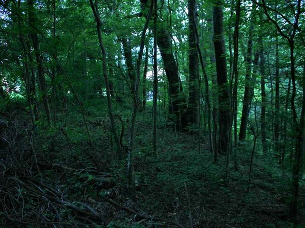 null bed null bath Vacant Land at  Ridgewood Ridgewood Way Cosby, TN, 37722 is for sale at 35k - 1 of 20
