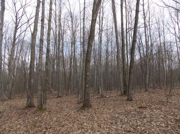 null bed null bath Vacant Land at  Hemlock Ln Farwell, MI, 48622 is for sale at 4k - 1 of 6