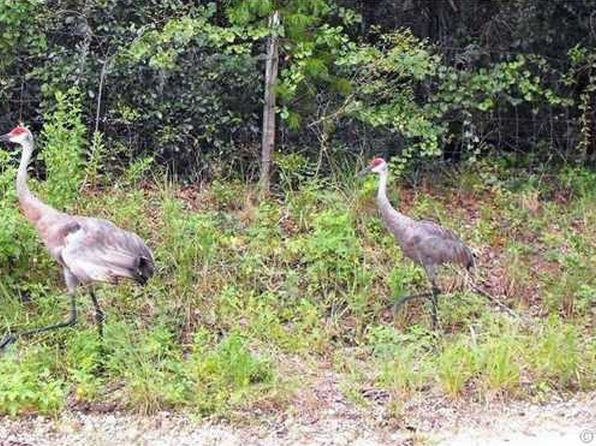 null bed null bath Vacant Land at NE 241 Ct Other City In the State of Florida, FL, 32124 is for sale at 31k - 1 of 4