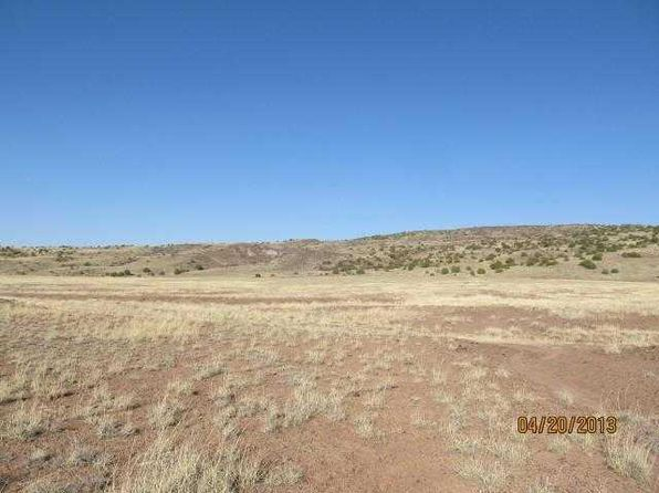 null bed null bath Vacant Land at 005 3 E Mi of Hwy Concho, AZ, 85924 is for sale at 10k - 1 of 9
