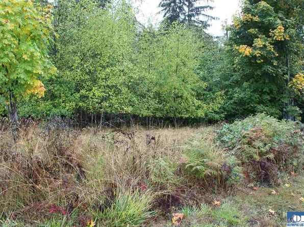 null bed null bath Vacant Land at 9999 S Penn Port Angeles, WA, 98362 is for sale at 38k - 1 of 3