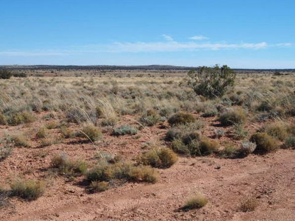null bed null bath Vacant Land at 5337 Lee Rd Snowflake, AZ, 85937 is for sale at 17k - 1 of 2