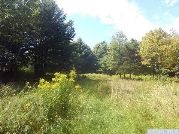 null bed null bath Vacant Land at 415415 Mountain View Rd Freehold, NY, 12431 is for sale at 170k - 1 of 22