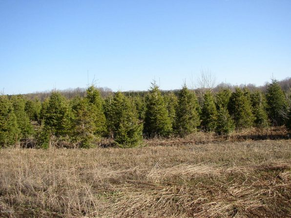 null bed null bath Vacant Land at 1 11 Mile Rd Bear Lake, MI, 49614 is for sale at 49k - 1 of 3