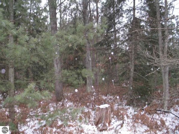 null bed null bath Vacant Land at 0 Chain Lake Rd South Branch, MI, 48761 is for sale at 30k - 1 of 8