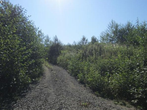 null bed null bath Vacant Land at 2 Silver Rdg Castle Rock, WA, 98611 is for sale at 45k - 1 of 2