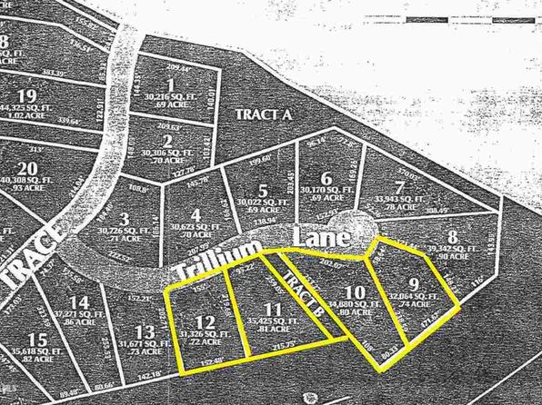 null bed null bath Vacant Land at 5 Trillium Ln Galena, IL, 61036 is for sale at 10k - google static map