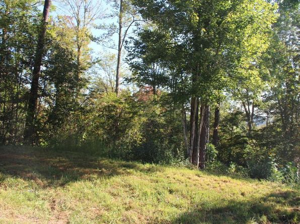 null bed null bath Vacant Land at 51 E Poplar Ln Lafollette, TN, 37766 is for sale at 28k - 1 of 6