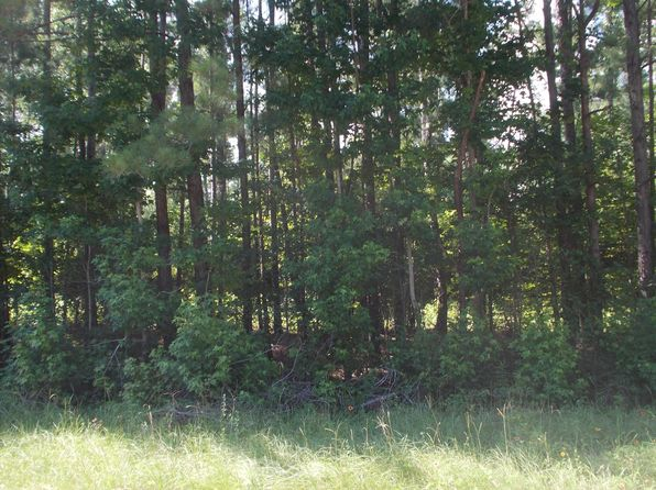 null bed null bath Vacant Land at  Tract 5 N Cr Jasper, TX, 75951 is for sale at 14k - google static map